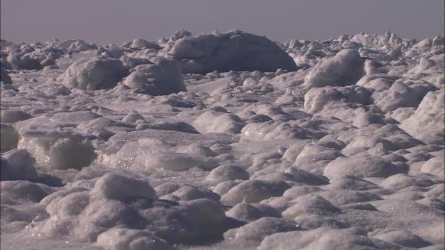 Drift ice in the sea of Shiretoko
