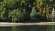 Drifting right past a sandy beach along a wooded riverbank