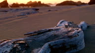 Driftwood sea stacks and waves at sunset and sand on beach Oregon Coast Oregon 13