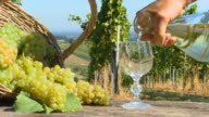 HD DOLLY: Drinking White Wine In Vineyard