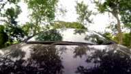 Driving a car, trees on the side, blue sky, day. Fast Speed / Time-Lapse. HD
