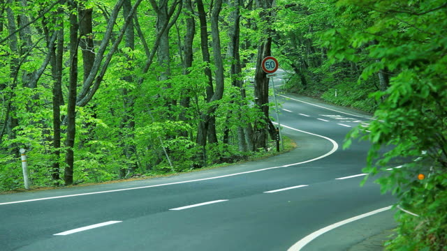 Mit einem fahren Kurvenreiche Straße im Wald