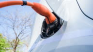 Driving an electric vehicle, saving the environment and making a difference