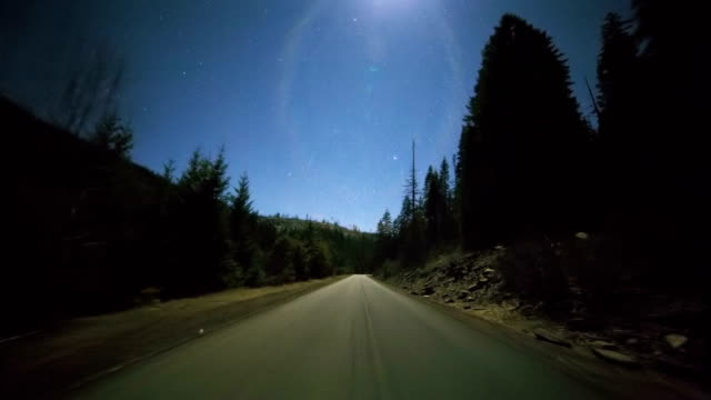 Driving at night under the stars and full moon through forest of fir tree silhouettes on empty road 2