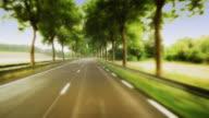 T/L WS POV Driving down rural road / Burgundy, France