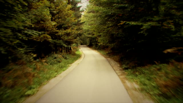 Driving on a forest road: HD, NTSC, PAL