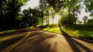 Guida su strada attraverso il parco