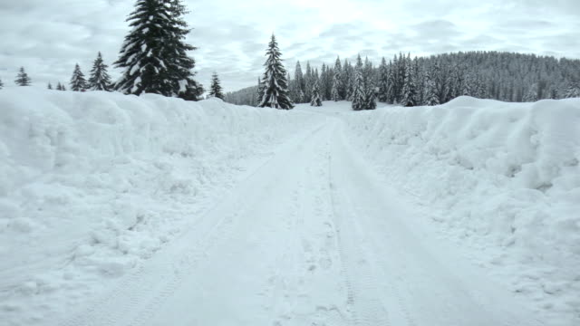 Driving On Snowy Forest Road