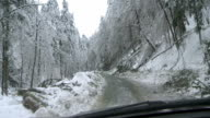 Driving Through A Forest After An Ice Storm