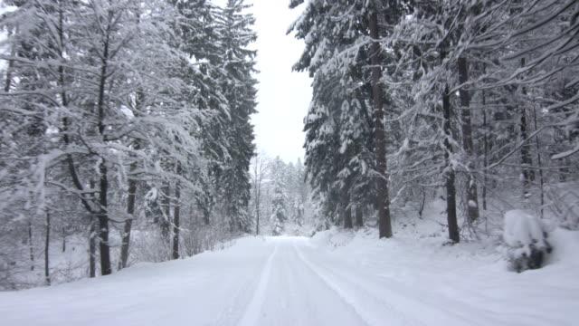 Fahren Sie durch einen verschneiten Wald