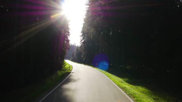POV Fahrt durch Nadelwald (UHD)