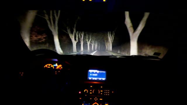 Fahren Sie durch den Wald bei Nacht