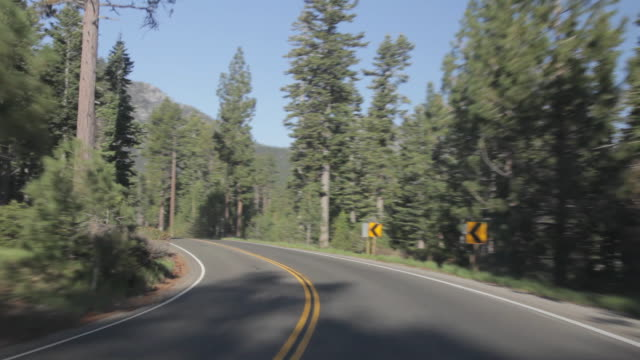 POV of driving through the woods in Lake Tahoe