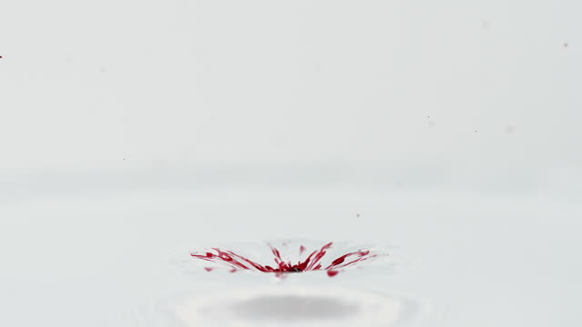 MS SLO MO Drop of Red Ink falling into Water against white background / vieux pont en auge, Normandy, France