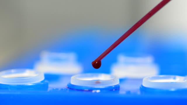 Drop red liquid into eppendrof