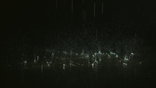 Drops of rain splash into a deep puddle.