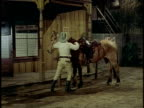 1974 MONTAGE Drunk cowboy mounting horse, Los Angeles, California, USA
