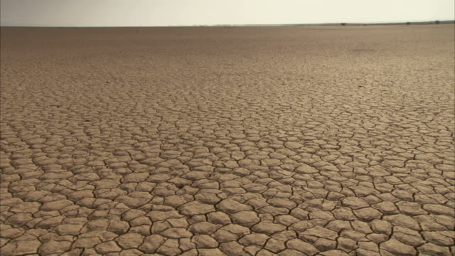Dry cracked earth during a drought. Available in HD
