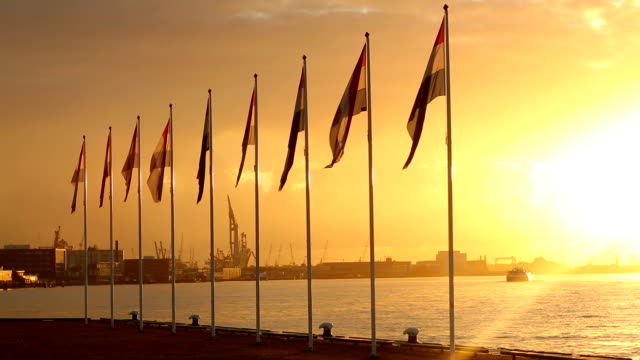 Dutch flags with Rotterdam's industry harbor in the background