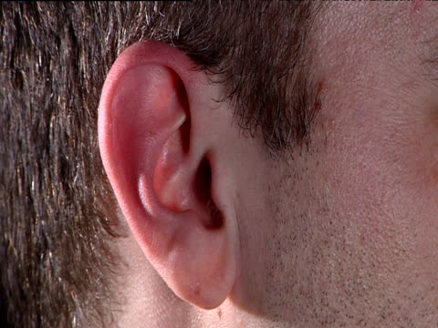 Ear belonging to young man with short brown hair as he twitches facial muscles in attempt to make ear waggle