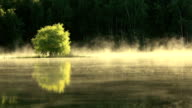 Primo mattino di nebbia crescente e luminosa, dalla superficie di un lago