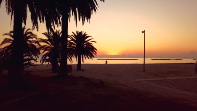 Vroege ochtend schilderachtig uitzicht op de zonsopgang boven de zee met palmbomen in silhouet