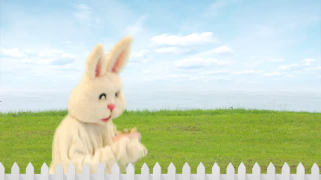 Easter Rabbit Gift