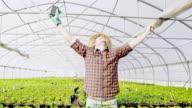 SLO MO DS extatische bloemist outstretching zijn armen in de kas