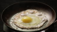 CU, Egg frying in pan, Atlanta, Georgia, USA