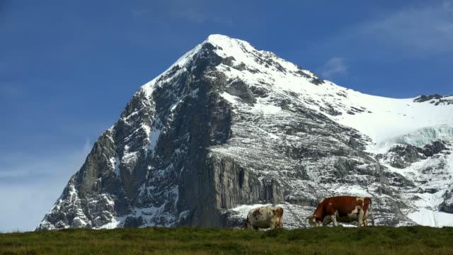 Eiger, Kleine Scheidegg, Bernese Alps, Switzerland, Europe
