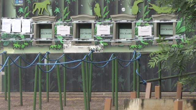 El gobierno brasileño prohibio este jueves la apertura al público del zoológico de Rio de Janeiro hasta que se realice una adecuacion ambiental del...
