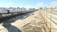 El hedor a retretes impregna el aire de la planta de tratamiento de aguas residuales de Washington que convierte excrementos en electricidad