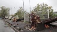 El huracan Maria ha dejado al menos dos muertos en su paso por el Caribe y ahora se cierne sobre Puerto Rico donde temen que sea el peor sufrido en...