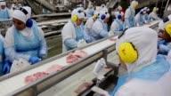El ministro brasileno de agricultura Blairo Maggi recorrio el martes una planta de pollo cerca de Curitiba mientras aumenta el numero de mercados que...