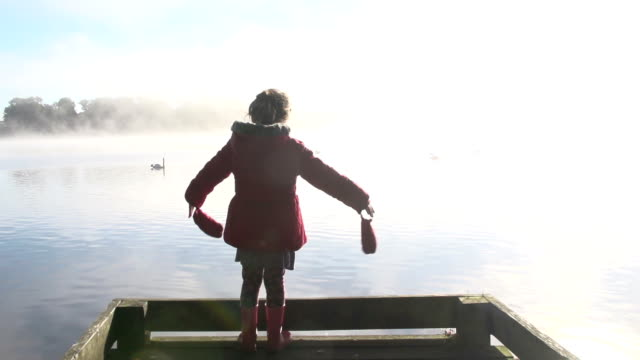 Elegant Swans On A Misty Lake