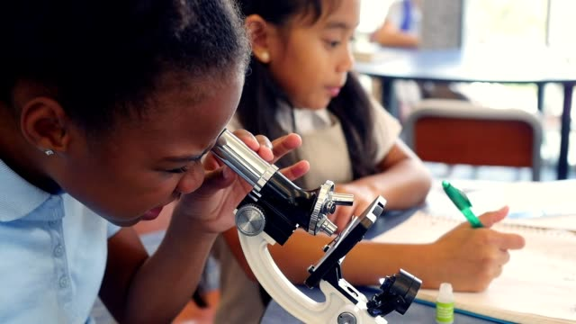 Elementary STEM school girls work together on science project