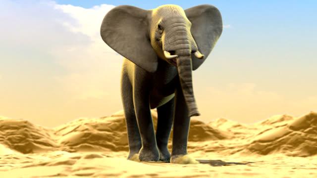 Elefante su deserto