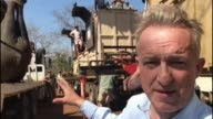 Elephants 'relocated' to animal sanctuary MALWAI Majete Wildlife Reserve EXT Reporter to camera elephant winched onto back of truck in background/...