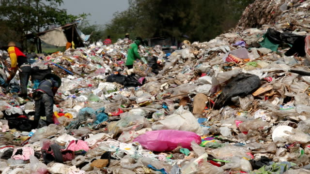 Employees and Scavengers are processing waste in Dump site