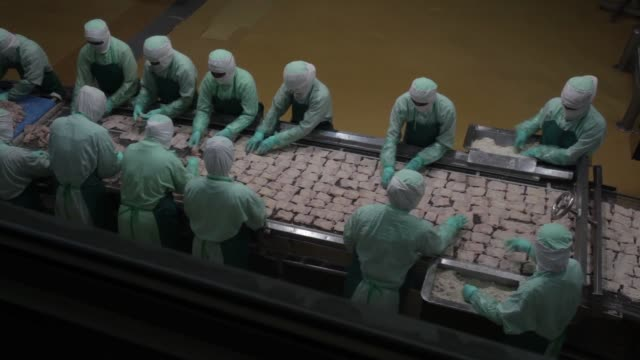 Employees arranges crumbed chicken pieces before frying in the precooked and frozen meat section Cooked crumbed chicken pieces move along a conveyor...