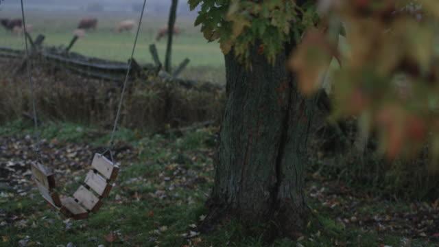 Empty Swing in a Backyard