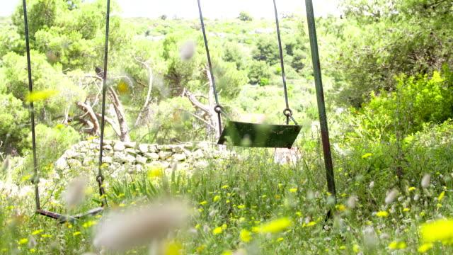 LS DS Empty Swings In The Wind