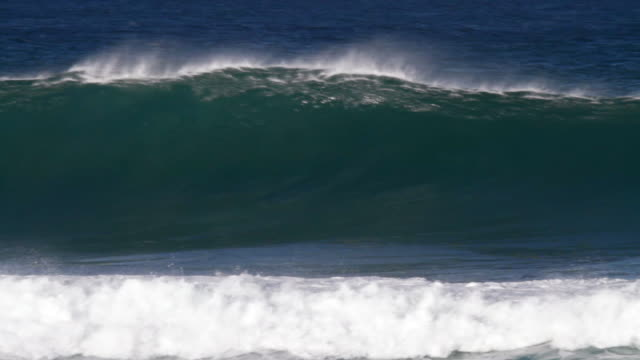 MS PAN Empty wave with offshore winds breaking on  inside reef  / Haleiwa, Hawaii, United States
