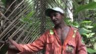 En plena selva amazonica las semillas de murumuru se estan convirtiendo en una importante fuente de recursos para las familias ribereñas de Brasil...