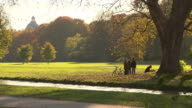 Englischer Garten, autumn,  people with dogs, lawn, coloured trees, little river, water