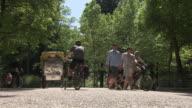 Englischer Garten, walking  people, people with bike, trees, summer, blue sky