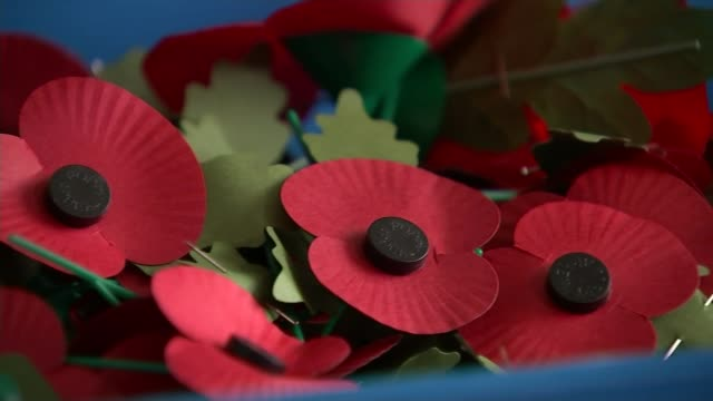 English and Scottish FA to defy FIFA over Armistice Day poppy wearing ENGLAND London PAN popiies in box Greg Clarke interview SOT