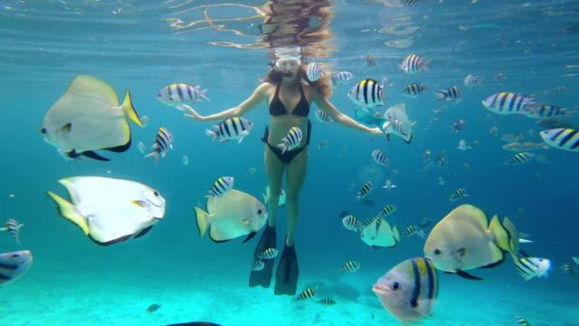Enjoying life beneath the surface