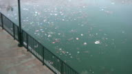 (HD1080i) Environment: Swirling Trash Floats Past in Water