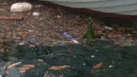 environmental pollution of the sea